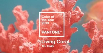 Barva roku 2019 je korálová!